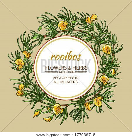 rooibos branches vector frame on color background