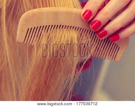 Female Hand Holding Comb Closeup