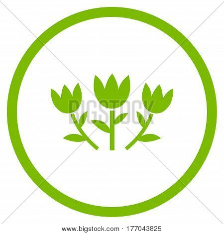 Tulip Flowers rounded icon. Vector illustration style is flat iconic symbol inside circle, eco green color, white background.