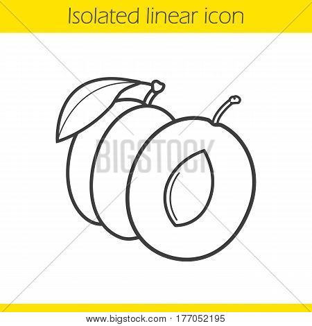Plum linear icon. Thin line illustration. Contour symbol. Vector isolated outline drawing