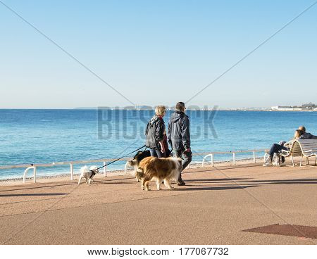 Nice, France - 25 February, Couple with dogs, 25 February, 2017. People and tourists having a rest on the Cote d'Azur.