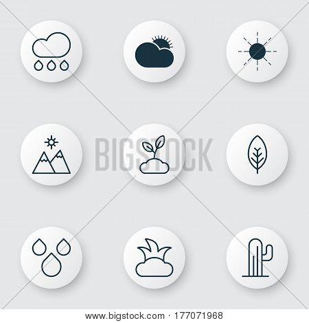 Set Of 9 Ecology Icons. Includes Tree Leaf, Sunny Weather, Cactus And Other Symbols. Beautiful Design Elements.