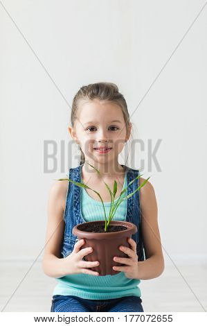 Cute child holding a potted plant indoor.