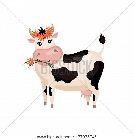 Cute cow with wreath in flat style isolated on white background. Vector illustration. Cartoon cow.