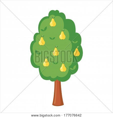 Green Pear tree full of yellow pears icon in flat style isolated on a white background. Vector illustration.