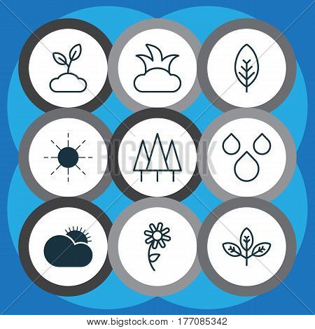 Set Of 9 Nature Icons. Includes Bush, Tree Leaf, Sprout And Other Symbols. Beautiful Design Elements.