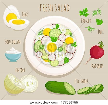 Vector illustration of cooking salad with egg, radish, cucumber, sour cream, onion, parsley, dill. Recipe of fresh salad, top view. Ingredients for salad.