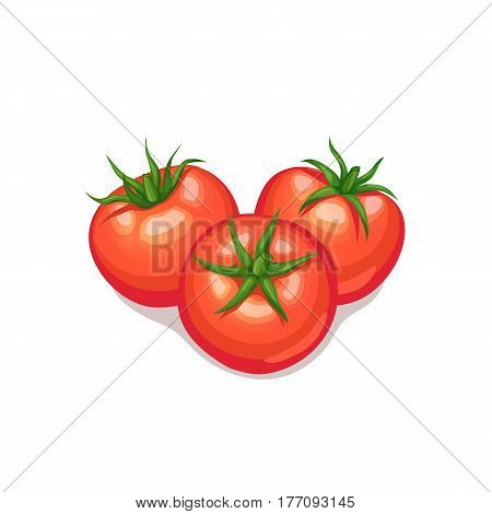 Three tomatoes isolated on white background. Tomato vector icon.
