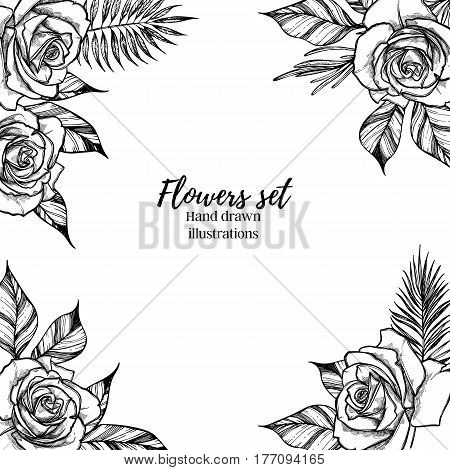Hand drawn vector illustration - Wedding frame with roses and tropical branches. Perfect for invitations greeting cards quotes blogs posters etc. Vintage collection