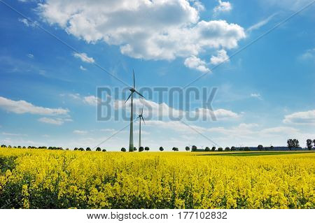 Wind turbines among rapeseed field and green meadows against a dramatically overcast sky