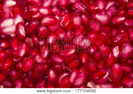 Close up of fresh red Pomegranate seeds