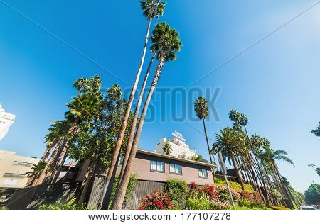 Los Angeles CA USA - November 02 2016: Roosevelt Hotel in Hollywood