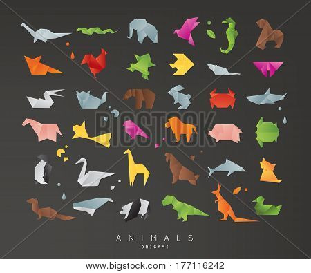 Set of animals color origami snake elephant bird seahorse frog fox mouse butterfly pelican wolf bear rabbit crab shark horse fish parrot monkey pig turtle penguin giraffe cat panda kangaroo on black background