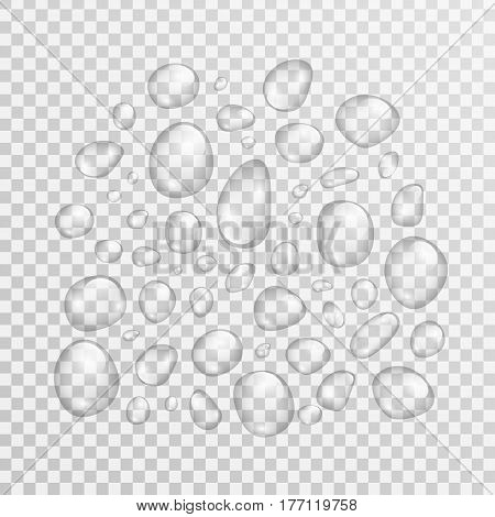 Vector isolated realistic water droplet on the transparent background.