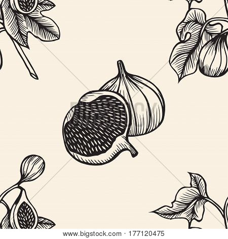 Hand drawn branches and leaves of tropical plants. Monochrome Ficus Lyre sketch pattern. Black and white seamless texture.