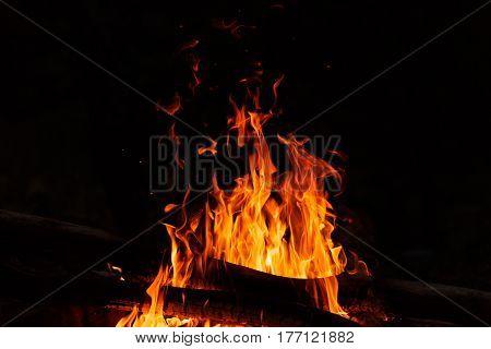 Campfire flames on a dark black background