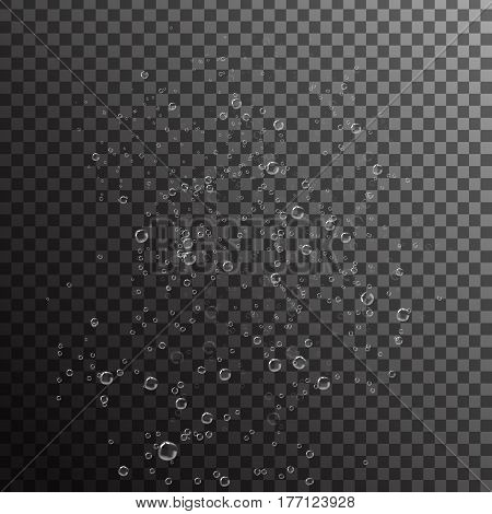Vector realistic under water bubbles on the transparent background.