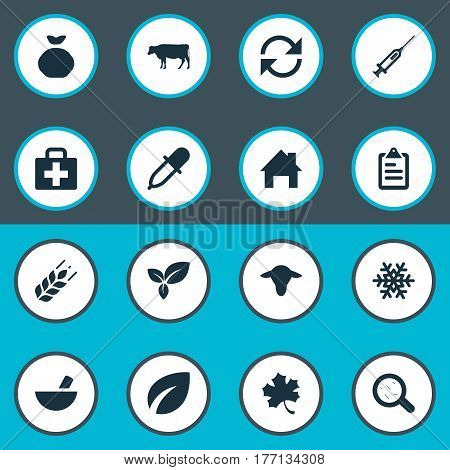 Vector Illustration Set Of Simple Agricultural Icons. Elements Snowflake, Cow, Medical Kit And Other Synonyms Pipette, Holdall And Refresh.