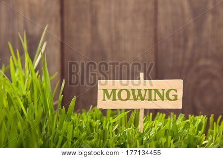 Signboard Mowing on Grass background of wood planks, Fresh green lawn near rustic grunge fence