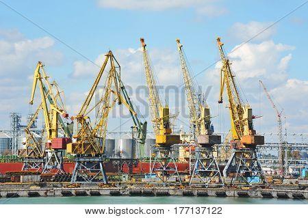 Port Cargo Crane