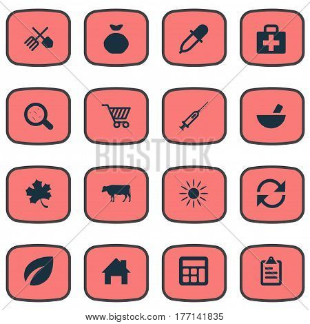 Vector Illustration Set Of Simple Agricultural Icons. Elements Medical Kit, Cow, Leaves And Other Synonyms Medical, Vaccine And Dropper.