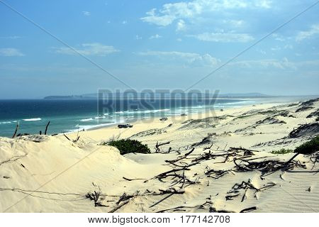 Horizontal landscape of the beach with sand dunes and cars (Belmont - Nine Miles - Beach NSW Australia)