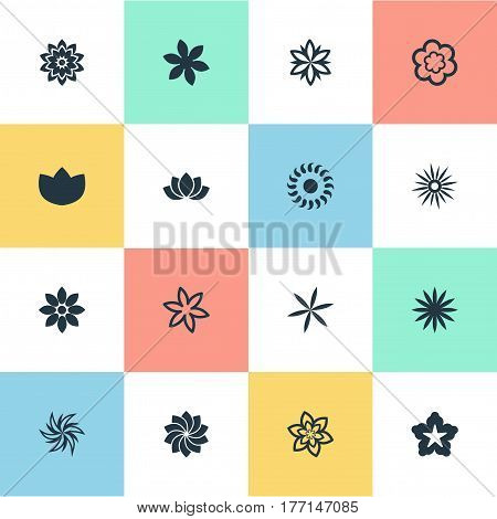 Vector Illustration Set Of Simple Flower Icons. Elements Peony, Bloom, Helianthus And Other Synonyms Marguerite, Marigold And Sweet Pea.