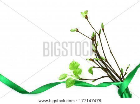 bouquet of young spring branches with leaves green ribbon on a white background