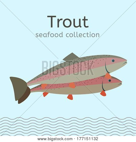 The trout image. Beautiful illustration in bright colours isolated on a light blue background. Seafood collection.