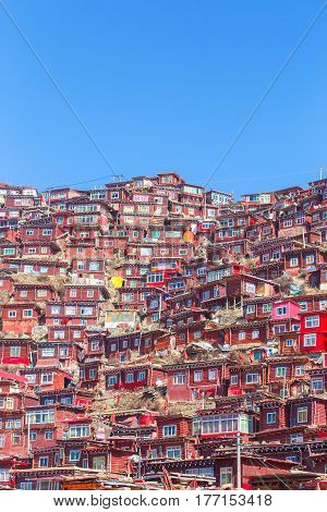 Red monastery and home at Larung gar (Buddhist Academy) in sunshine day and background is blue sky Sichuan China.