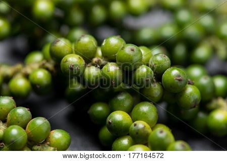 Fresh green pepper on dark background. Green peppercorns.