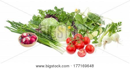 Pile of different early vegetables like young white cabbage tomatoes onion bulbs green onion red radish cucumbers and potherb like parsley dill basil cilantro on a light background