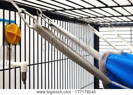Detail of fastening ferret bed or hammock in cage