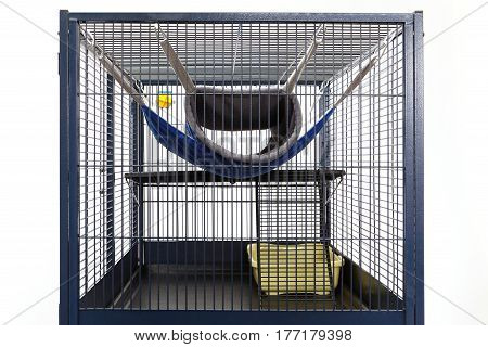 Detail of second floor of luxury ferret cage with hammock toilet and drinker