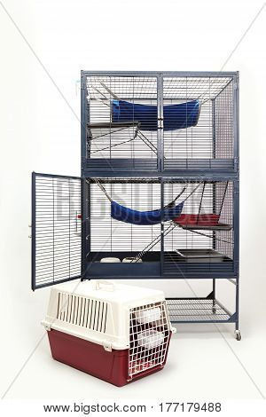 Equipped habitat for ferret living and travelling