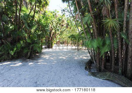 Beach Of Playa Blanca Near Livingston