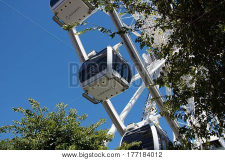 Cape Town South Africa - March 02 2017: Cabins of the Cape Wheel at the V&A Waterfront viewed through the trees