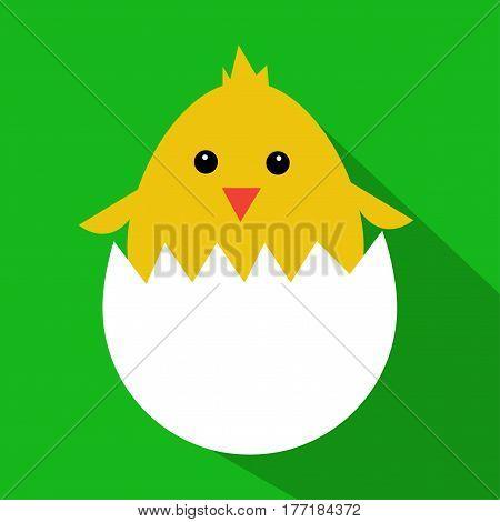 Cute yellow cartoon baby chicken illustration art