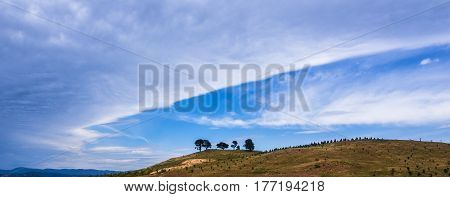 White fluffy clouds over a brown barren hill with four trees