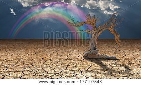 Desert Flood   3D Render