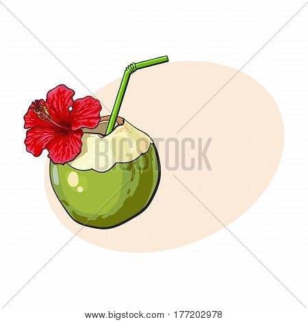 Coconut cocktail, drink decorated with red hibiscus flower, summer vacation attribute, sketch vector illustration with place for text. Hand drawn coconut drink, cocktail with straw and flower