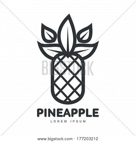 Black and white symmetric graphic pineapple logo template, vector illustration isolated on white background. Stylized line art graphic pineapple logotype, logo design