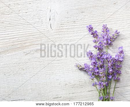 Few sprigs of lavender on  wooden background