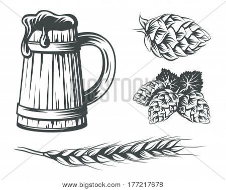 Set of beer components design elements. Beer mug with foam hops and wheat vector illustration.