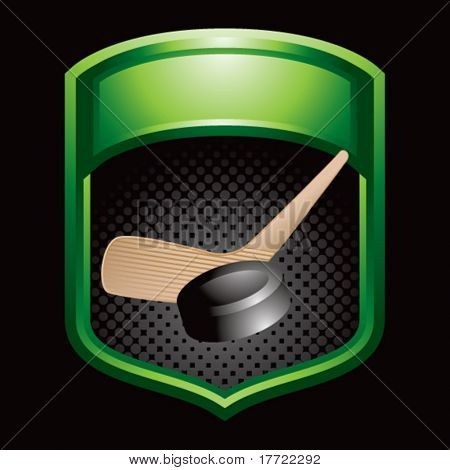 hockey stick and puck green display