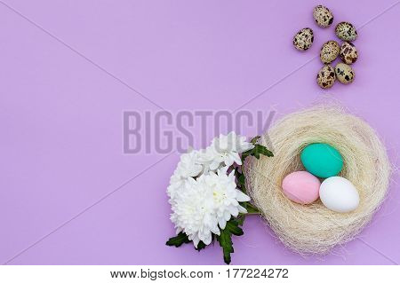 Nest With Colored Eggs, Quail Eggs And Chrysanthemum Flower On A Pink Background.