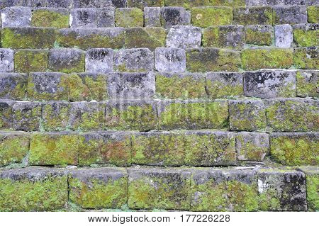 Wall With Grass For Background