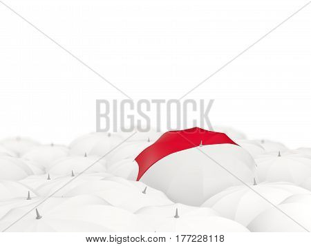 Umbrella With Flag Of Indonesia