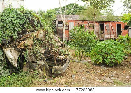 Abandoned train wagon at Quirigua on Guatemala