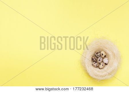 Few Quail Eggs In The Nest On A Yellow Background.
